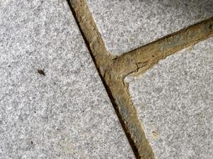 Steg för steg om skiffer plattor över en betongplatta