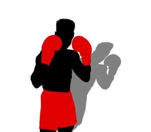 Skillnaden mellan boxare i korthet & stammar
