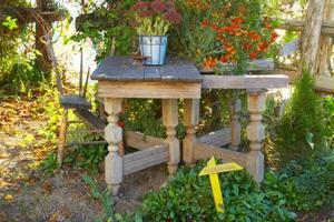Gratis idéer för trädgård blomma sängar