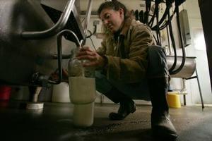 Hur man köper obehandlad mjölk