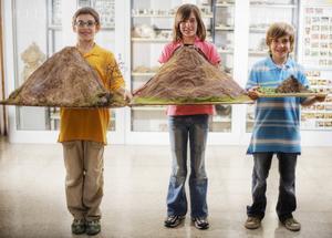 Hur man bygger en vulkan med salt deg