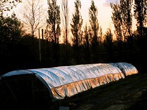 Växthusgaser jordbruksmetoder