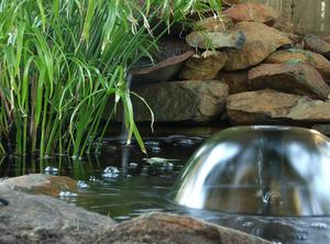 Hur man bygger ett litet vattenfall damm