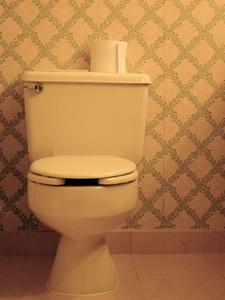 Hur man installerar en Adapter krage för en toalett fläns