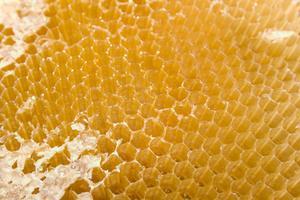 Hur man bygger honung gasborttagare