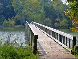 Hur man gör en stark lilla bron av 15 tunna trä pinnar & trälim