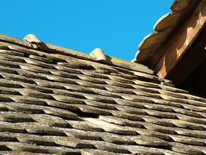 Produkter att hålla mögel & mögel växer på tak bältros