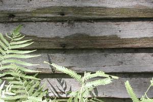Hur man ersätta och fixa spontade trä ytterväggar