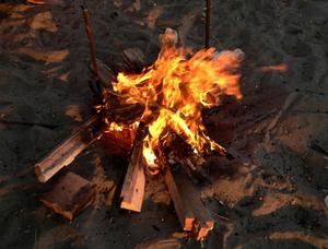 Hur man startar en brand med våt trä