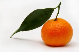 Murcott Tangerine som en House anläggning