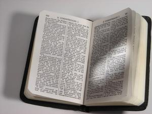 Barnens bibel berättelse spel