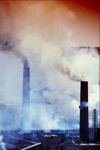 Effekten av global uppvärmning på primär verksamhet