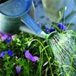 Hur man startar eget trädgårdsarbete företag
