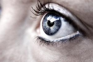 Ögonsjukdom orsakad av fåglar