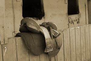 Hur man mäter en engelsk häst sadel