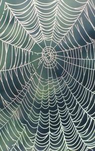 Hur man gör en kedja spindelnät