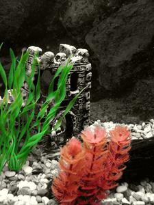 DIY konstgjorda Silk växter för ett akvarium