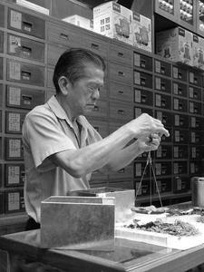 Kinesiska örter för att sänka fsh nivåer