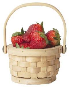 Hur man bygger en jordgubbe bana med nät