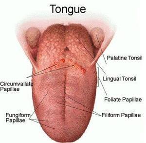värk i tungan